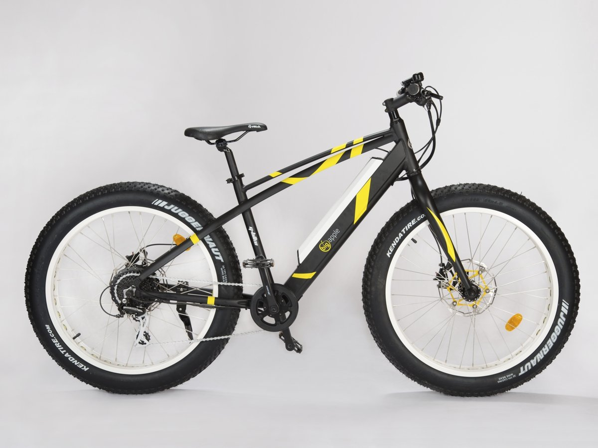 Electric Fatbike speed pedelec 45km/hr with integrated display Geobike Black